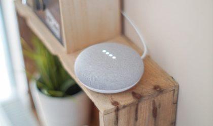 Amazon's Alexa or Google Assistant?