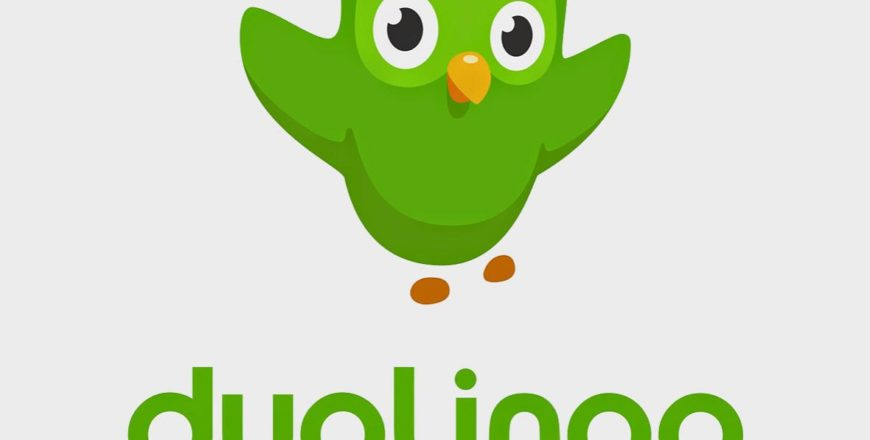 What's the best way to learn with the DuoLingo App?